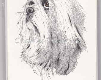 Lhasa Apso Note Cards With Brown Eyes