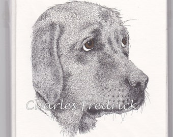 Yellow Lab Note Cards With Brown Eyes