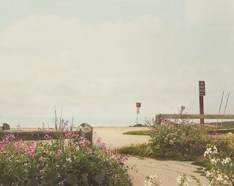 Beach Path Photography, Coastal Decor, Sandy Beach Art, Pink Wildflowers, Minimal Wall Art, Beach House Decor Photo