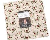 Glad Tidings, 10 quot Layer Cake, Christmas Fabric, Jo Morton Fabric, Precut Squares Quilting Cotton Fabric, 38090LC, B20