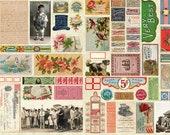Flea Market Mix, Parchment Digital Panel, Cathe Holden Fabric, 100 Cotton, 7350-11D, 1263