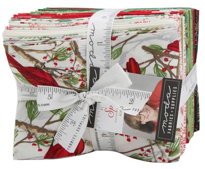 Fat Quarter Bundle 22pc Precut Fabric Quilting Cotton Robin Pickens 48650AB Moda Splendid