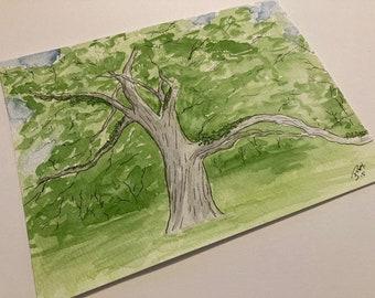 Live Oak and Resurrection Fern watercolor original art
