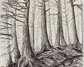 """ACEO art Trees - Original Pen and Ink """"Deep"""" forest scene"""