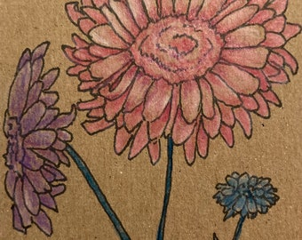 art - Zinnias - Ink and colored pencil ACEO