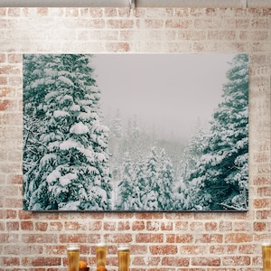 Home Decor. Nature photography Cow parsley Winter solstice Wall Art Snow Winter sky,Seed heads