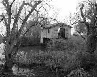 Louisiana Bayou, Boathouse in Swamp, Dark Wall Art Print, Haunted House, Tree Branches, Black and White Photos, Nature Print