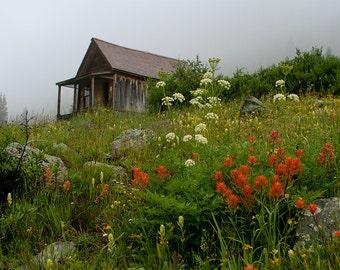 Colorado Cabin Print, Animas Forks, Silverton Colorado Decor, Durango, Wildflowers, Colorful Rustic Cabin Photography, Rustic Wall Art