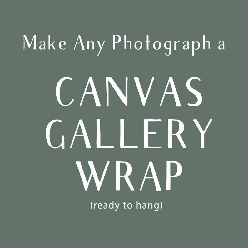 Canvas Gallery Wrap Large Canvas Nature Decor Original Art image 0