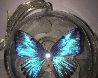 Blue Morpho Christmas Ornament