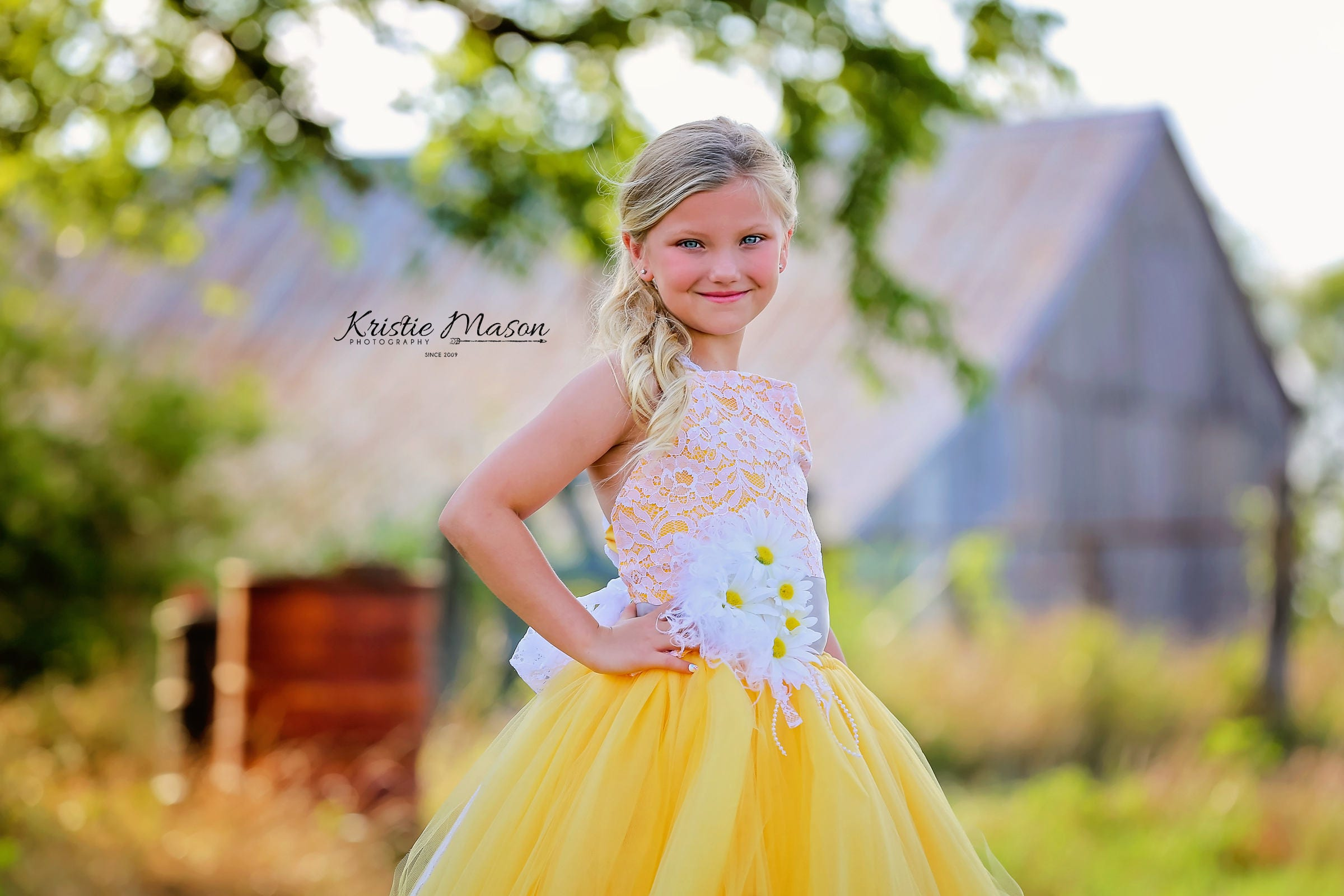 Daisy Dress Yellow Dress Flower Girl Dress Lace Dress Tulle Dress