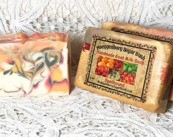 Goat Milk Soap, Spellbound, Cold Process, handmade soap, Moeggenborg Sugar Bush, gift for her, teacher gift, girlfirend gift, housewarming