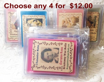 Wax Melts, Wax Tart Melts, choose any 4, assorted wax tarts, assorted scents, many scents to choose from, Moeggenborg Sugar Bush,