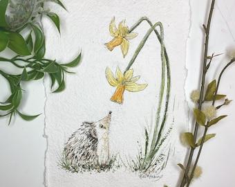 Hedgehog and daffodils - Art Print