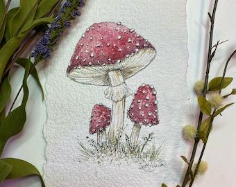 Woodland Mushrooms - Fine Art Print