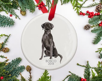 Black Labrador Christmas Ornament Personalized Dog Ornament Black Lab Christmas Gift For Dog Lovers Pets First Christmas Family Dog