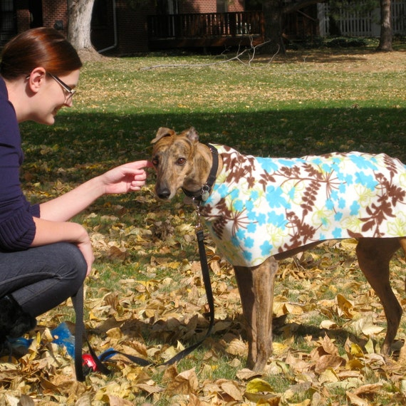 Full-sized Greyhound Dog Coat Digital Print at Home Sewing Pattern ...