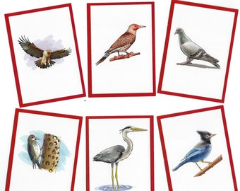 Mixed Bird Cards for ATCs, Collage, Scrapbooking, Paper Arts, Assemblage and MORE PSS 2472