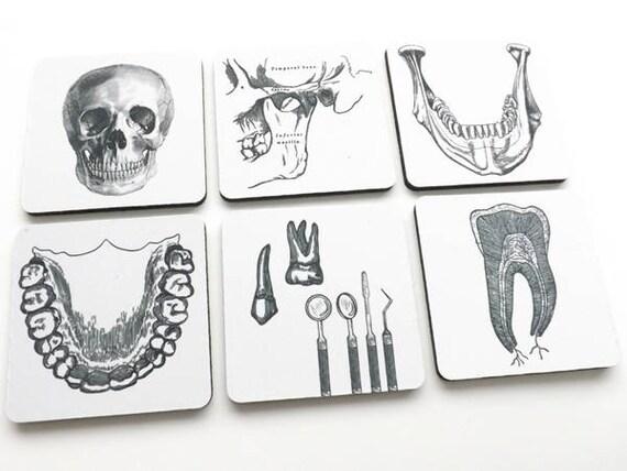 Dentist Dental Hygienist Drink Coasters Gift Set Teeth Jaw Etsy