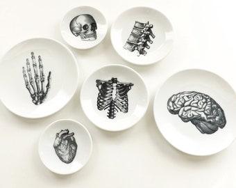 Anatomy Dishes small shallow ceramic plate goth decor halloween graduation gift wedding ring dish skull heart brain home medical black white