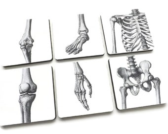 Joints Drink Coasters medical gift set anatomy ortho doctor nurse school graduation party favor goth hip foot hand knee arthritis md rn pa