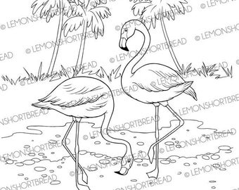 Digital Stamp Flamingo, Digi Download, Flamingoes Summer, Tropical Birds, Graphic, Clip Art, Coloring Page, Scrapbooking Supplies