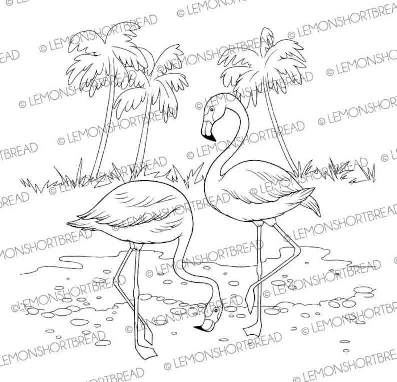 Digitalen Stempel Flamingo Digi Download Flamingos Sommer Tropische Vögel Grafik Clipart Malvorlagen Scrapbooking Zubehör
