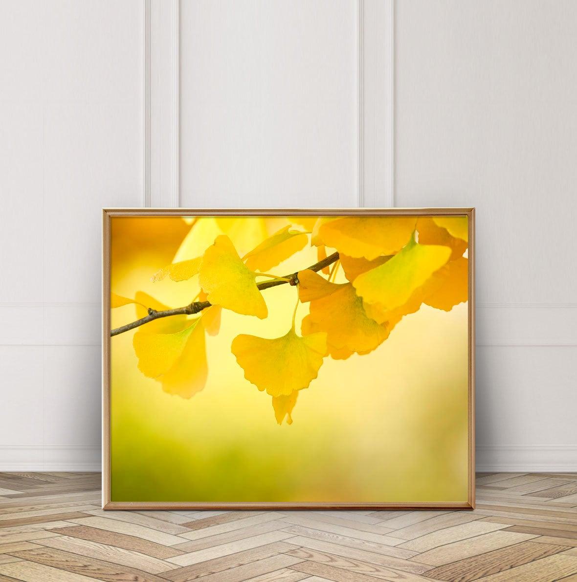 Golden Ginkgo Leaves Photo Digital Download Instant | Etsy