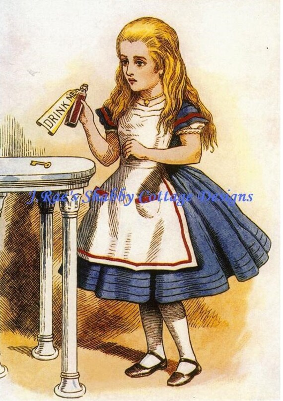 Alice In Wonderland Pink Drink Me Fabric Block 5x7