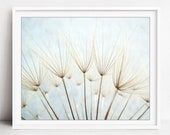 Dandelion Print, Nature P...