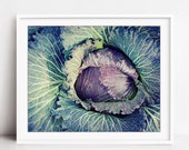 Purple Cabbage Print, Foo...