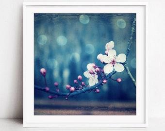 Botanical Photography Print, Plum Blossoms, Flower Photography, Pink Blue Wall Art, Floral Wall Art, Indigo Blue Art, Plum and Blue