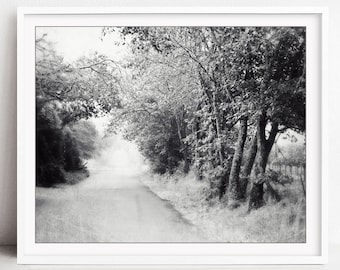 Country Road Print, Black and White Wall Art, Tree Wall Art, California, Landscape Photography, Road Trip, Misty Road