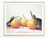 Citrus Print, Food Photog...