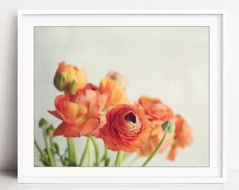 Still Life Photography - Ranunculus Flowers, Orange Still Life, Flower Photography, Floral Wall Art