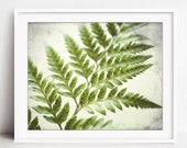 Fern Botanical Print, Gre...