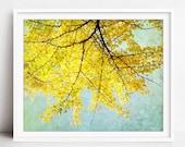 Ginkgo Tree Print, Nature...