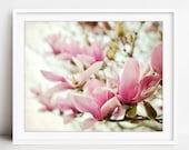 Magnolia Flowers Wall Art...