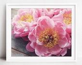 Peony Flower Print, Botan...