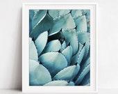 Agave Leaves Print, Botan...