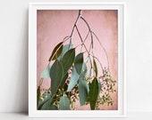 Botanical Print, Pink Gre...
