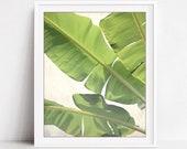 Banana Leaves Print, Bota...
