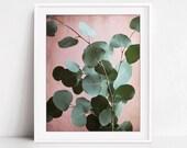 Botanical Print, Pink Sag...