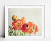 Still Life Photography, Ranunculus Flowers, Orange Still Life, Flower Photography, Floral Wall Art