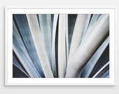 Agave Leaves Print, Natur...
