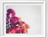 Botanical Photography Flo...