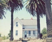 Farmhouse With Palm Trees...