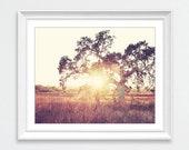 Landscape photography, Ca...