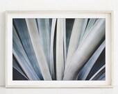 Abstract Leaves Print, Na...