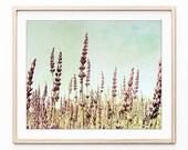 Lavender Field Print, Nat...